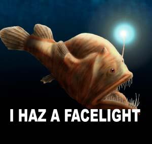 I haz a facelight